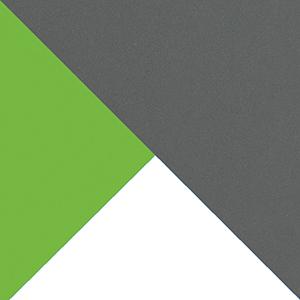 Futuro wybarwienie jasny grafit ⁄ mamba zieleń ⁄ biały brylantowy