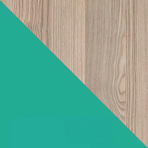Meble systemowe ULTIMO marki DOLMAR wybarwienie jesion coimbra ciemny / zielen